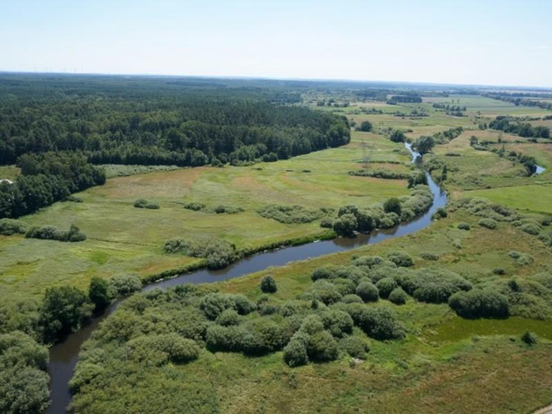 Rzeka Wieprza