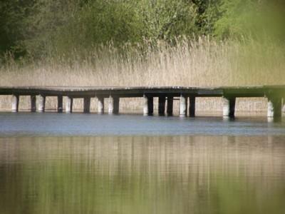 Jezioro Marszewo 9