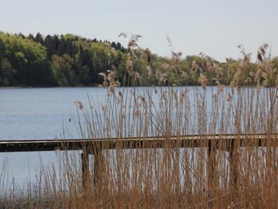 Jezioro Marszewo 4