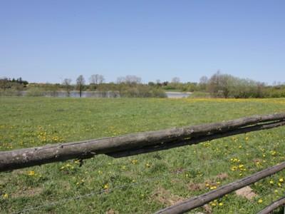 Jezioro Marszewo 6