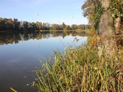 Jezioro Pieńkowo 3