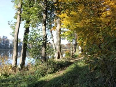 Jezioro Pieńkowo 4