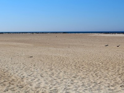 Plaża Dubaj 5