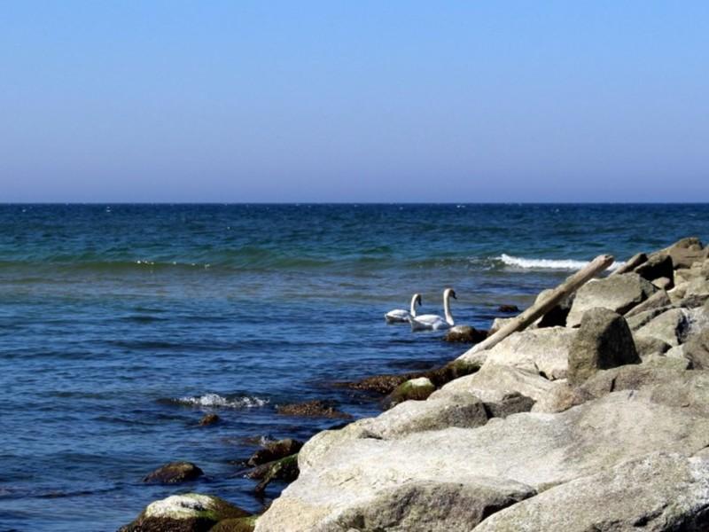 Morze i plaże