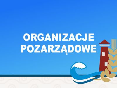 organizacje pozarzadowe