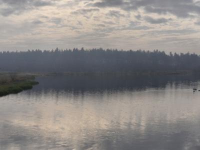 Zbiornik wodny Zakrzówek Szlachecki w Zakrzówku Szlacheckim