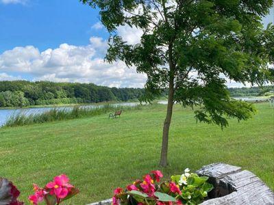 Zdjęcie przedstawia Jezioro w Ostrowcu i otoczenie, trawę, drzewo oraz nasadzenia.