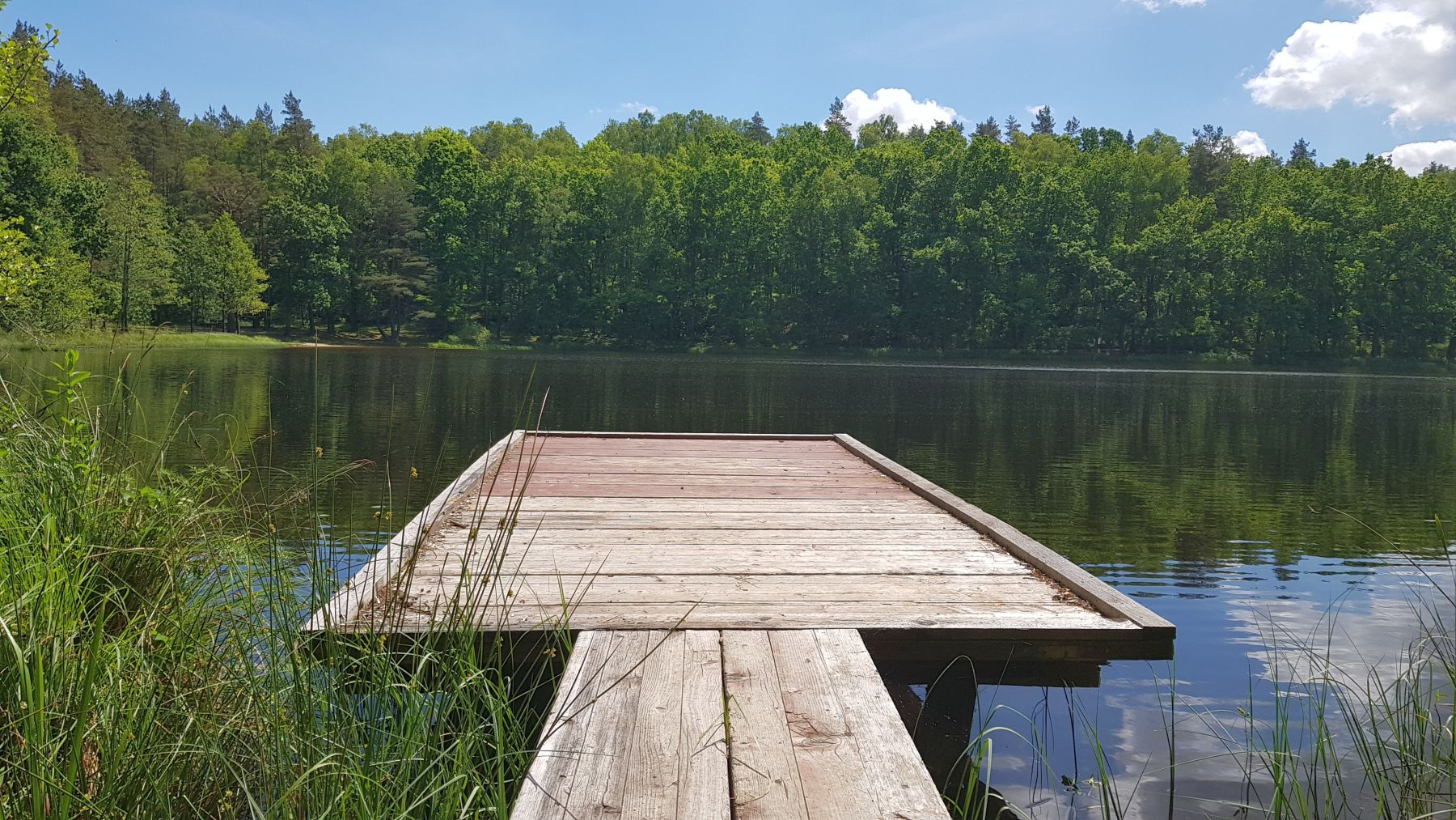 Zdjęcie przedstawia pomost z widokiem na Jezioro w Pękaninie.