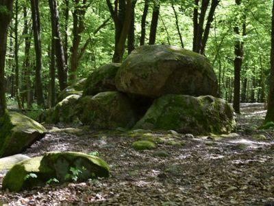 Zdjęcie przedstawia grobowce megalityczne w Borkowie.