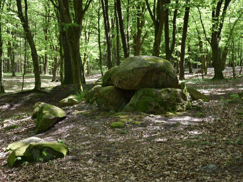Zdjęcie przedstawia megality w Borkowie.