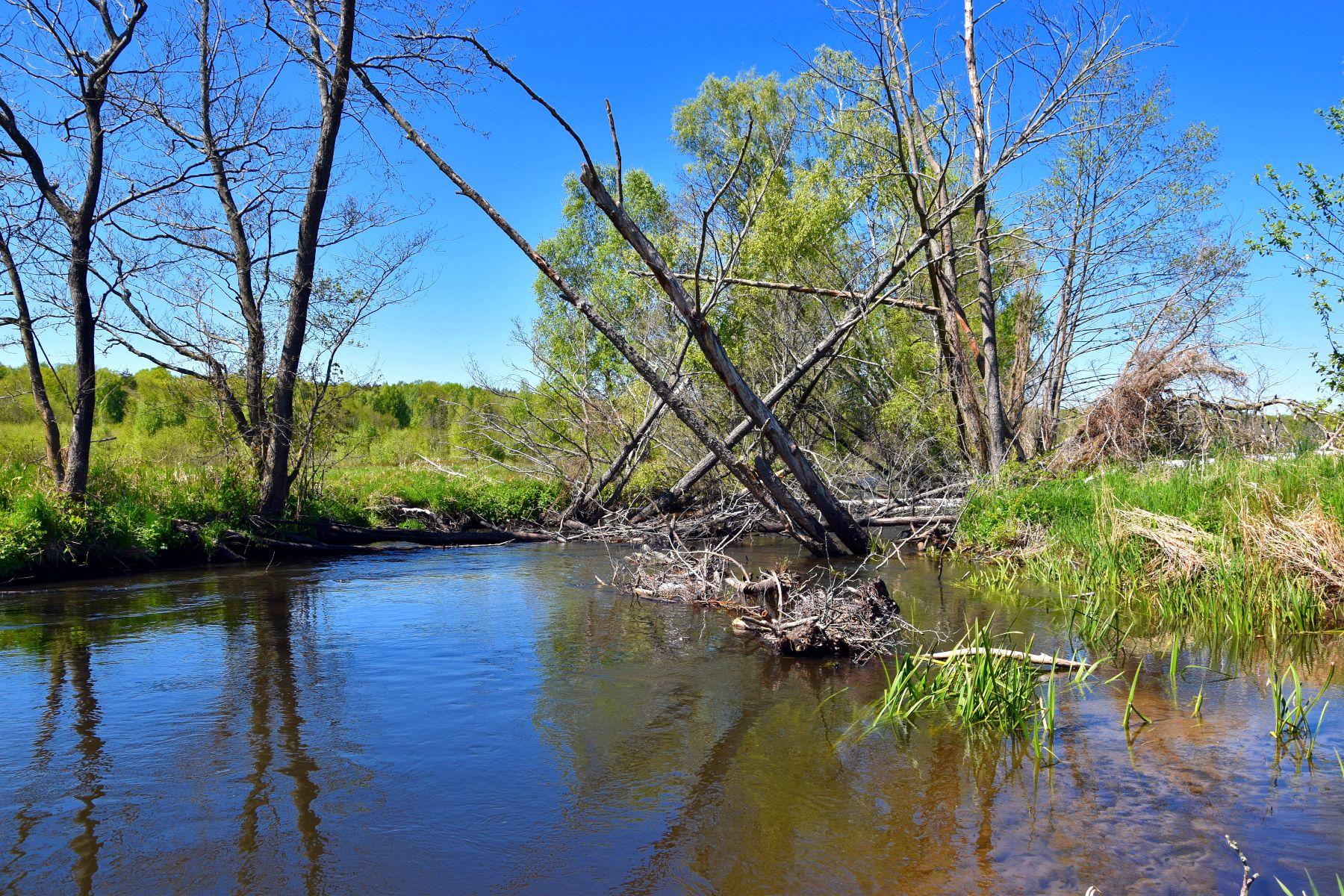 Zdjęcie przedstawia rzekę Grabową przy moście w Lejkowie.