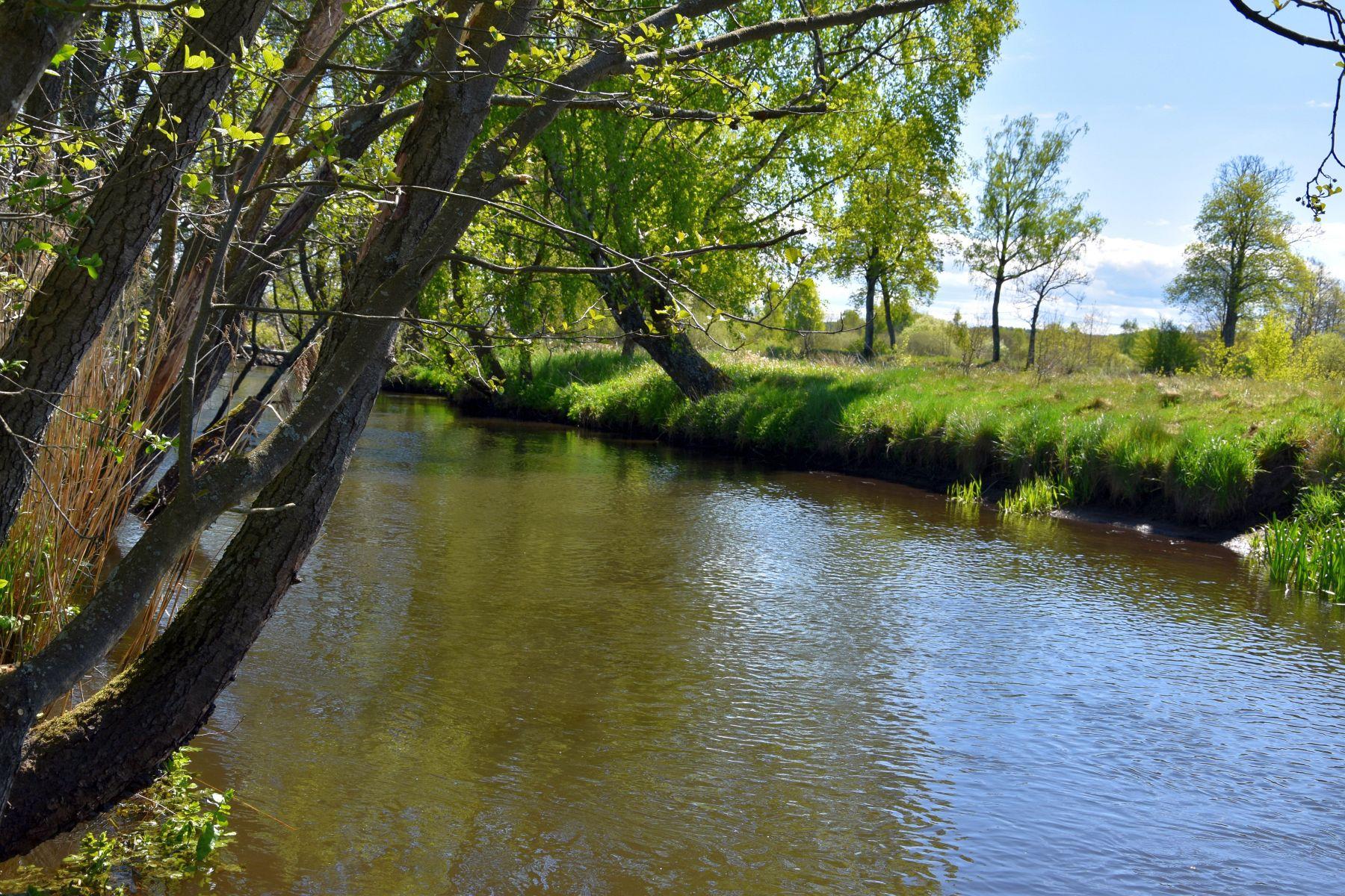 Zdjęcie przedstawia most na rzece Grabowej między Lejkowem a Święcianowem.