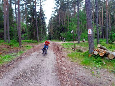 Zdjęcie przedstawia wychowanków Placówki Wsparcia Dziennego z Niemicy podczas przejażdżki rowerowej lasem.