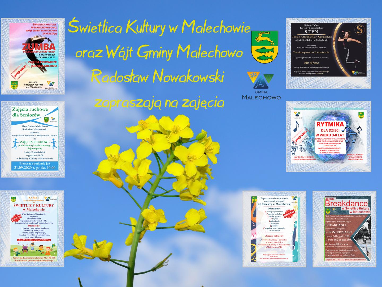 Zdjęcie przedstawia plakat zbiorczy z ofertą wszystkich zajęć oferowanych w Świetlicy Kultury w Malechowie.