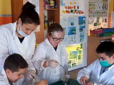 Zdjęcie przedstawia grupkę dzieci z PWD w Laskach podczas zajęć fizyczno- chemicznych z elementami matematyki.