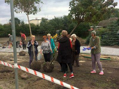 Zdjęcie przedstawia uczestników projektu podczas nasadzeń terenu rekreacyjnego przy Domu Wiejskim w Ostrowcu.