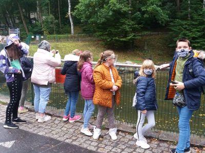 Zdjęcie przedstawia wychowankówz PWD Laski oglądających zwierzęta w ZOO