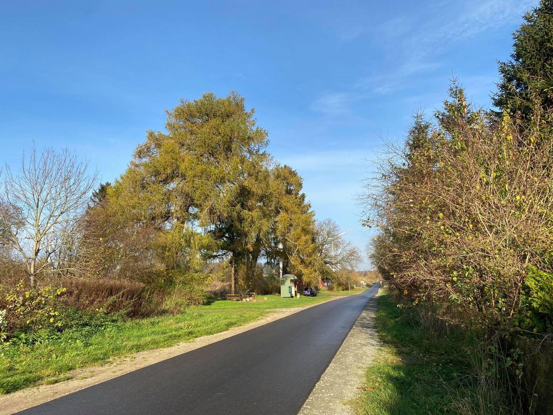 Jedna z dróg w gminie Malechowo w jesiennej odsłonie.