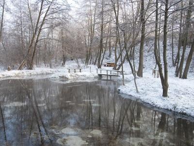 Bijące źródła pod rzeką Tuczyn oraz drzewa na brzegach rzeki w scenerii zimowej(śnieg na brzegach rzeki, kladkach)