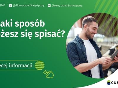 Plakat zielony z białym napisem jak możesz się spisać