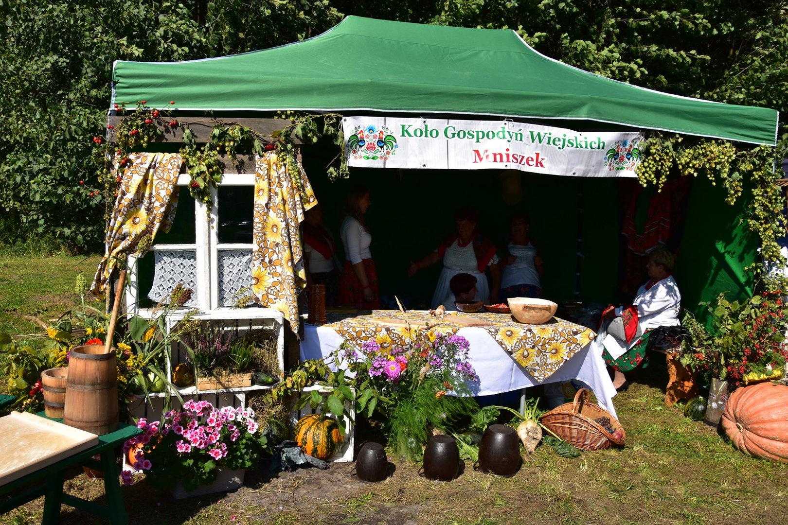 namiot wystawowy KGW Mniszek