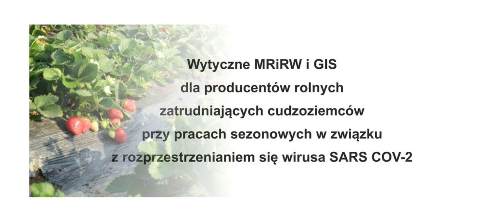 Wytyczne  dla producentów rolnych