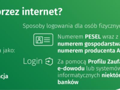 PSR 2020 - jak spisać się przez Internet