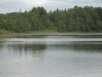 Jezioro Radzynek