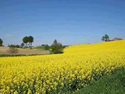 Wiosna w gminie