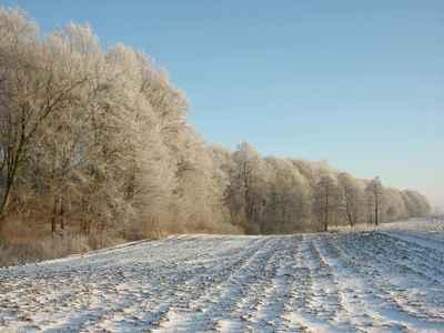 Zima w gminie